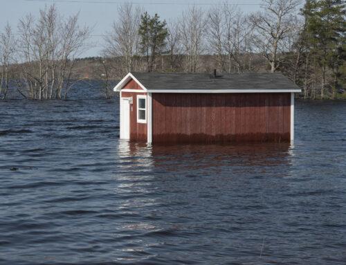 Architecture résiliente aux inondations : nouveau projet d'ASFQ avec l'Université de Montréal